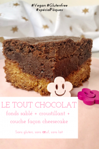 Un délicieux gâteau au chocolat digne d'une pâtisserie, sans gluten, sans lactose et sans oeuf, c'est possible ? Imaginez une croûte sablée surmontée d'un délicieux croustillant très chocolat et d'une couche chocolatée façon cheesecake... Un délice ! Dépêchez-vous de tester cette petite merveille ! #vegan #glutenfree #chocolat #grosgâteau