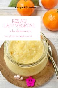 Riz au lait végétal à la clémentine, sans lactose, sans gluten et sans oeuf / Un Sourire aux Lèvres